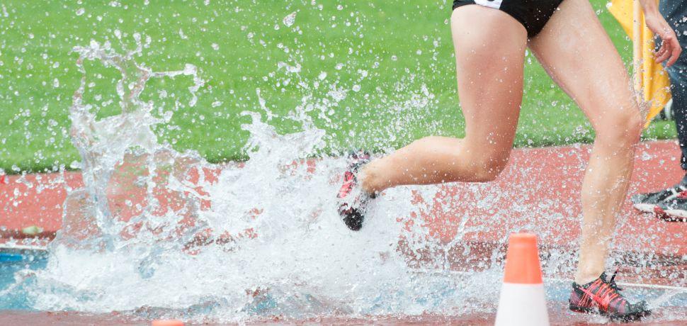 Leichtathletik Spikes Staffelstäbe Dornen Teamline