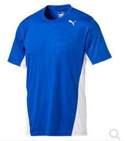 Team T-Shirt 2017 Herren